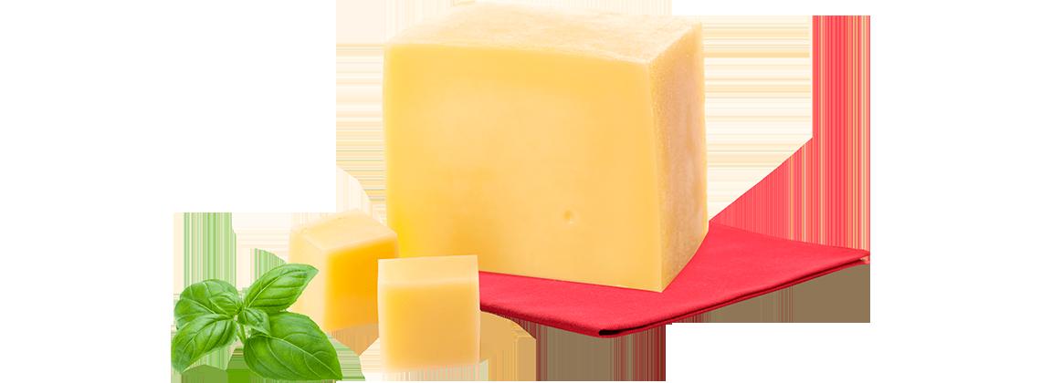 Сыр с бифидобактериями – уникальная разработка Новгород-Северского сырзавода