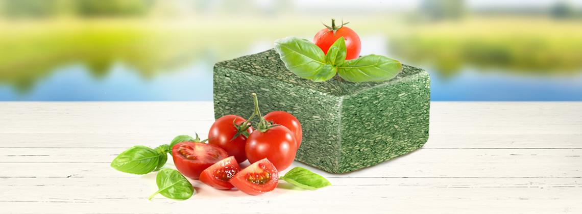Зеленый сыр и его польза для здоровья